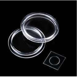 Zeer klein glasplaatje om de lens van de iPhone 7 te beschermen tegen krasjes