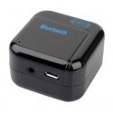 Bluetooth kastje met Micro USB en AUX ingang