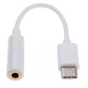 Witte USB-C adapter voor de headset